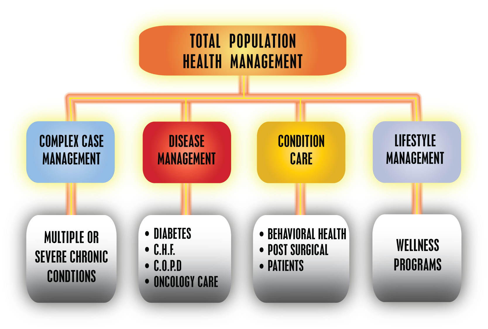 Case_Mgt_Chart_for_Website_CHART.jpg